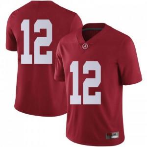 Youth Alabama Crimson Tide Skyler DeLong #12 College Crimson Limited Football Jersey 355770-599